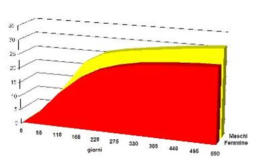 grafico crescita cucciolo di taglia media